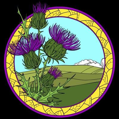 Scottish thistle  | Alfonzo | Digital Drawing | PENUP