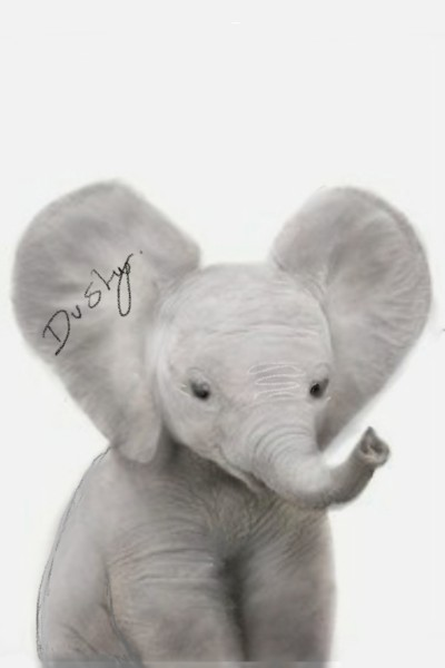 baby elephant in pencil and rubbing | dusty | Digital Drawing | PENUP