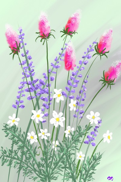 field flowers | Damirijana | Digital Drawing | PENUP