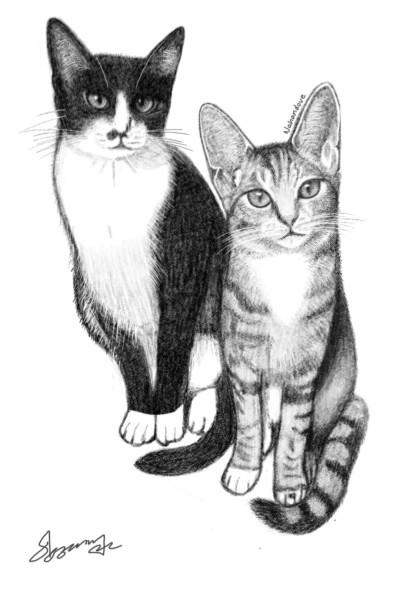 구조된 아기고양이가 이렇게 자랐습니다~^^ | Nahandove | Digital Drawing | PENUP