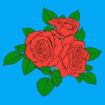 hoa hồng    nguyen_quynh_vn   Digital Drawing   PENUP