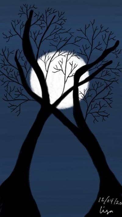Trees silhouette  | lisa2706 | Digital Drawing | PENUP