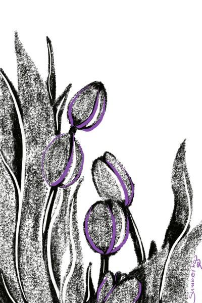 Tulips for @Ramdan1111   SummerKaz   Digital Drawing   PENUP