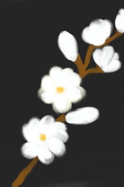 Plant Digital Drawing | susmi | PENUP