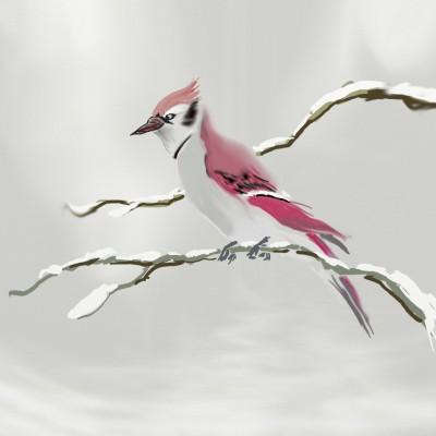 Snow Jay | Grafixguru | Digital Drawing | PENUP