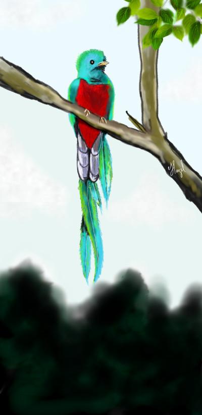 Quetzal | Hazeleszu | Digital Drawing | PENUP
