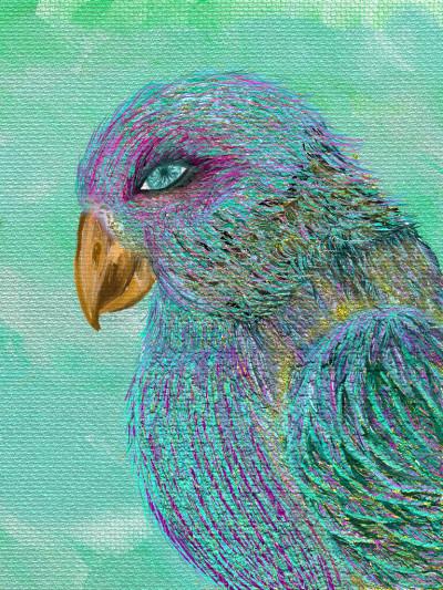 Oiseau imaginaire | revlune | Digital Drawing | PENUP