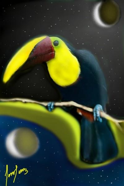 TUCÁN  | cesar | Digital Drawing | PENUP