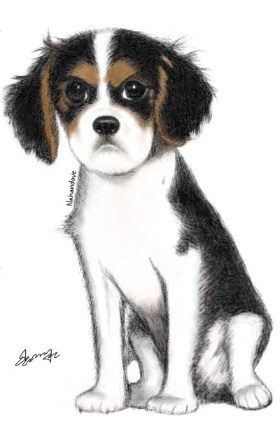 An angry little puppy | Nahandove | Digital Drawing | PENUP