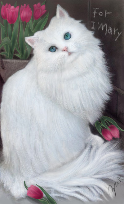 white cat ♥for i.mary    azu   Digital Drawing   PENUP