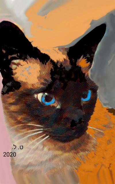 SIAMESE PORTRAIT  | Tobie.ISR | Digital Drawing | PENUP