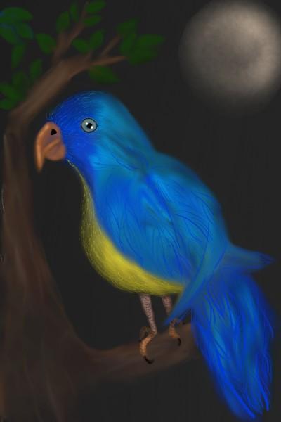 bird blue   val   Digital Drawing   PENUP