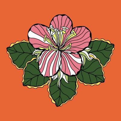 lotus    JaZzI   Digital Drawing   PENUP
