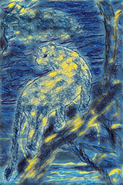 Panthère dans la nuit | richard | Digital Drawing | PENUP
