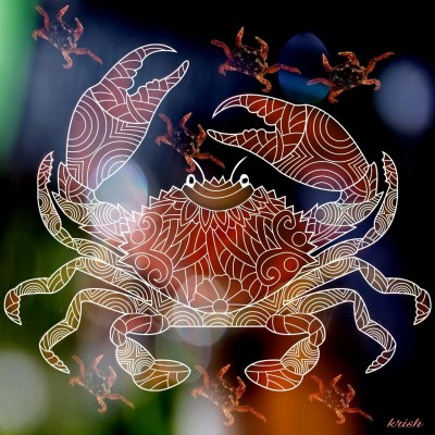 Lovely Nature ♡ Lovely Crabs | krish | Digital Drawing | PENUP