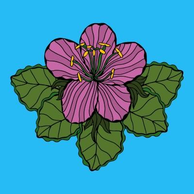 Coloring Digital Drawing | charliejjp | PENUP