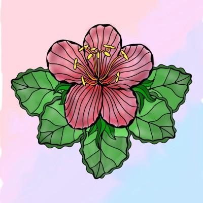 Hibiscus | MariyaRobert | Digital Drawing | PENUP