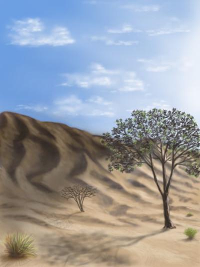 Desert of Abudhabi | abdulrahman | Digital Drawing | PENUP