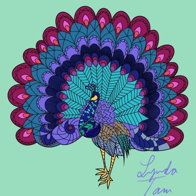 Spring Peacock | Lynda | Digital Drawing | PENUP