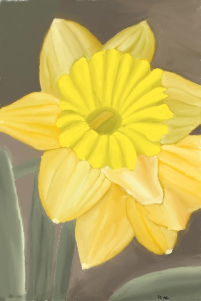 daffodil flower | tinie | Digital Drawing | PENUP