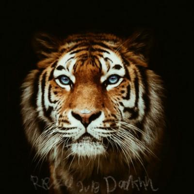 art | RezaDadkhah | Digital Drawing | PENUP