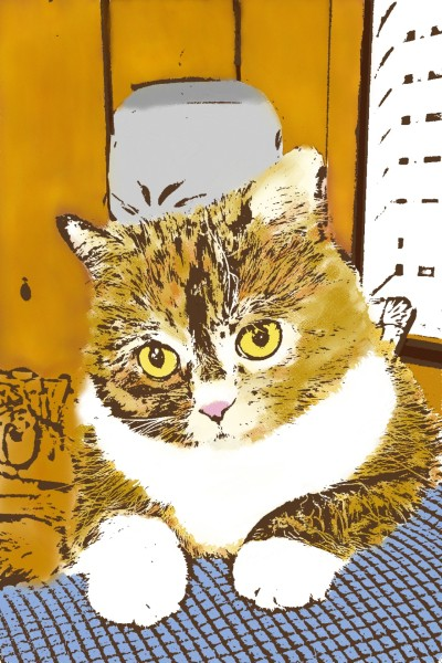Zoey my cat | Morejon | Digital Drawing | PENUP