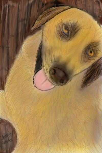 My dog Duquesa  | Jenniglez24 | Digital Drawing | PENUP