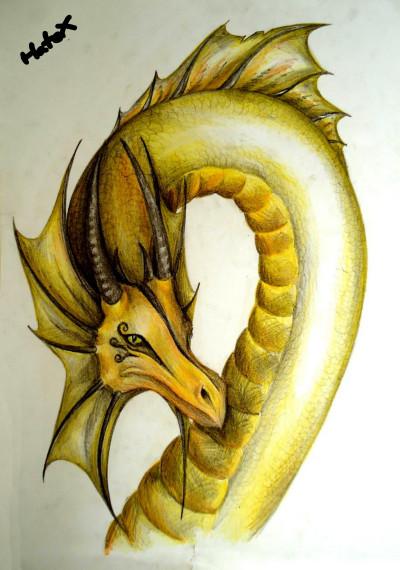 Yellow Dragon | HateX | Digital Drawing | PENUP
