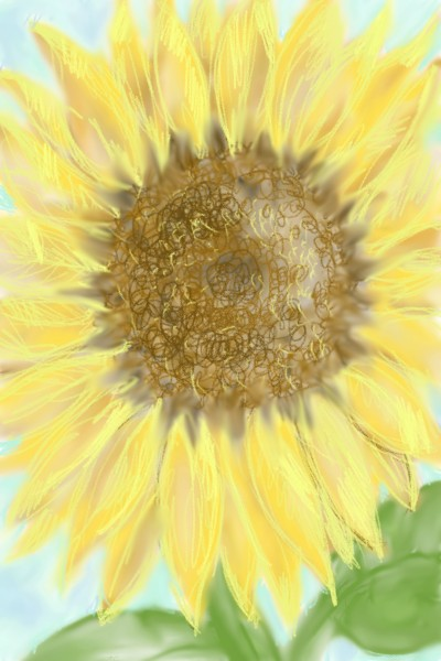 sunflower! | LauritaZ | Digital Drawing | PENUP