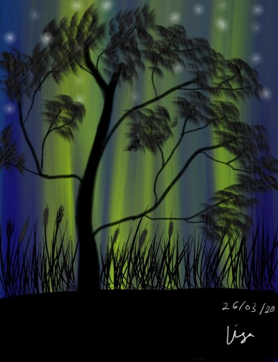 Aurora lights  | lisa2706 | Digital Drawing | PENUP