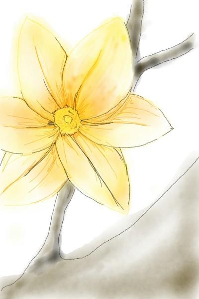Lela  | suyun | Digital Drawing | PENUP