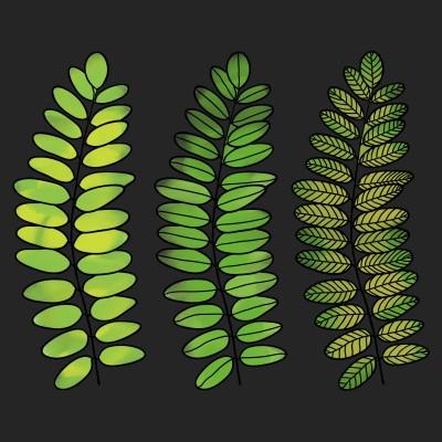 leaves | Anevans2 | Digital Drawing | PENUP