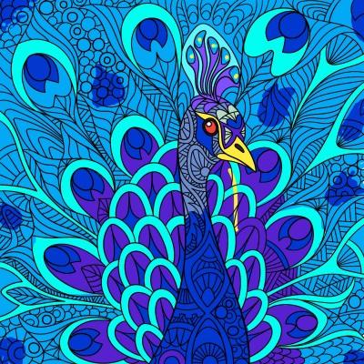 Peacock | Chris | Digital Drawing | PENUP