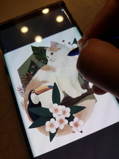 my cat | kimdajeong | Digital Drawing | PENUP