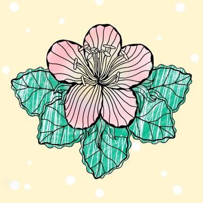 눈송이 꽃 | Joy | Digital Drawing | PENUP