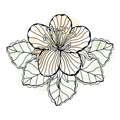 Coloring Digital Drawing | -------- | PENUP