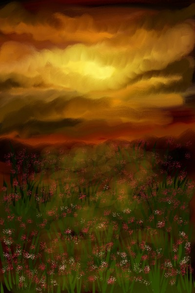 poppy field | Damirijana | Digital Drawing | PENUP