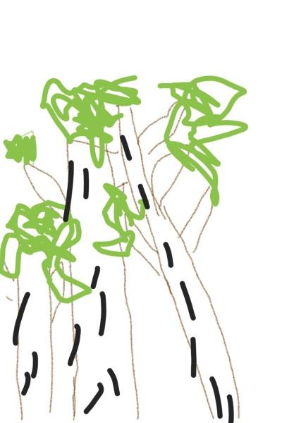 Plant Digital Drawing   hyder   PENUP