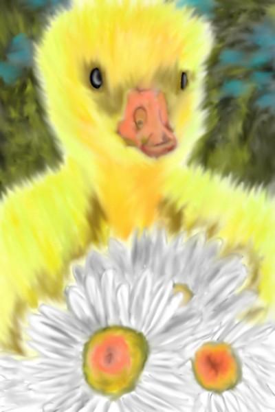 Duckling   Mark349   Digital Drawing   PENUP
