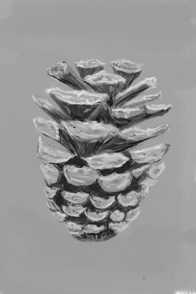 PC   honeycandy   Digital Drawing   PENUP