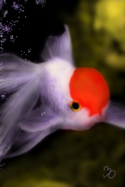 Let's Draw a Cute and Colorful fish! ~^^ | Sina | Digital Drawing | PENUP