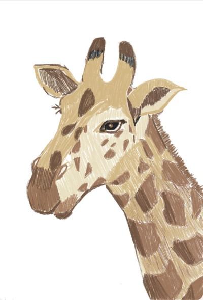 Animal Digital Drawing | Haedeun0930 | PENUP