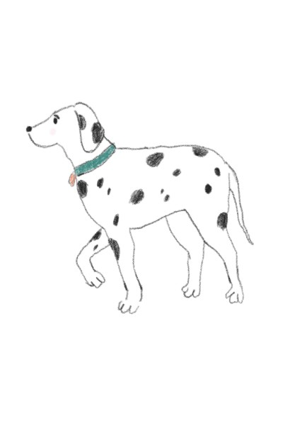Dog ( By Harriet). | Harry.Jessy | Digital Drawing | PENUP