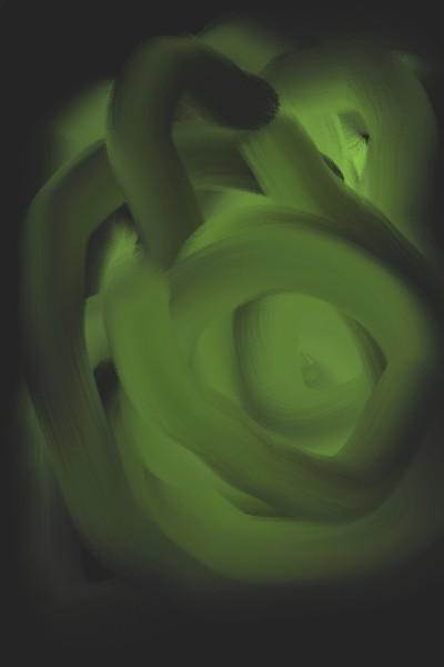 Plant Digital Drawing   k56xic56c56ic   PENUP