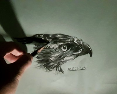 Eagle    -DANDELION-   Digital Drawing   PENUP