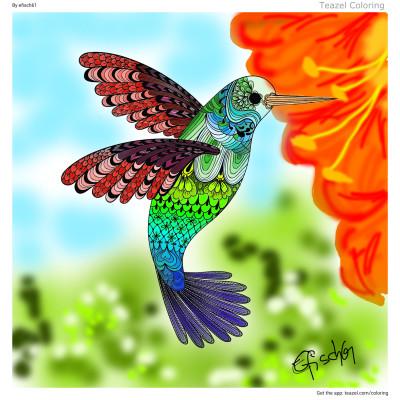 Kolibri  | evi61 | Digital Drawing | PENUP