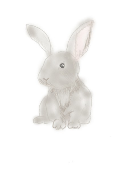 Rabbit | Shawn | Digital Drawing | PENUP