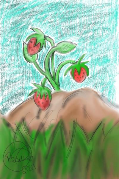 strawberries | britt | Digital Drawing | PENUP