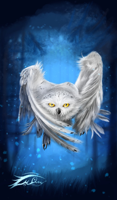 spiritual owl | i.mary | Digital Drawing | PENUP
