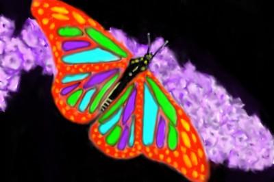 Butterfly    Mark349   Digital Drawing   PENUP